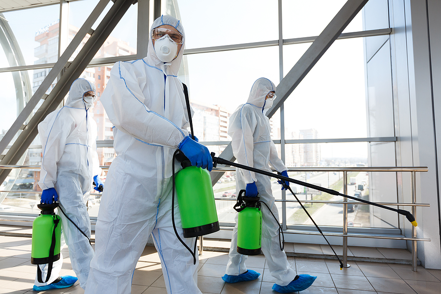 professional workers in hazmat suits disinfecting indoor accommodation, pandemic health risk, coronavirus